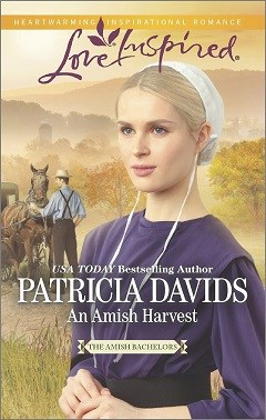 An Amish Harvest is the story of Samuel Bowman, a young man who is injured when a gas generator explodes and suffers burns on his hands and face. He fears he may never see again. Harvest is the busiest time of the year for his family so his father hires an Amish widow, Rebecca Miller, to be a temporary nurse. Samuel finds his unwanted caretaker to be bossy and outspoken. Rebecca sees her patient is wallowing in self-pity and will have none of it. A battle of wills ensues that will bring both lonely people a chance at love and a new life if they are willing to put the pain of their pasts behind them.