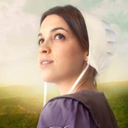 The Amish Wonders Series