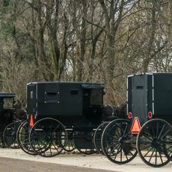 Amishbuggies