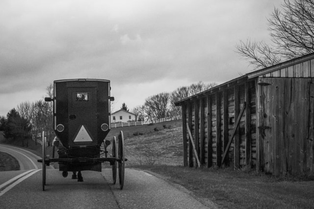 Amish Buggy Black and White