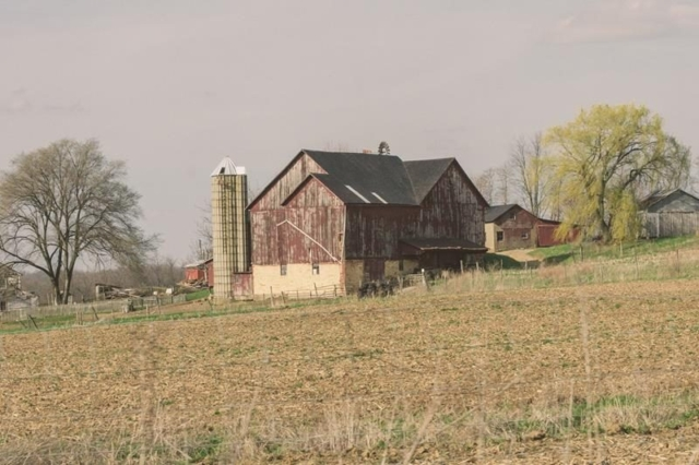 Amish Farm 3