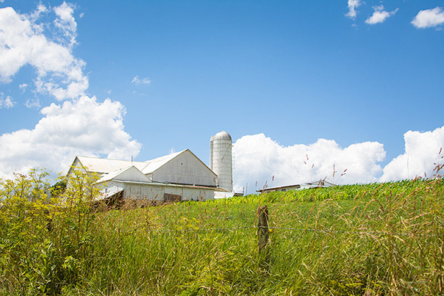 Amish-Farm-Blue-Sky-and-Field