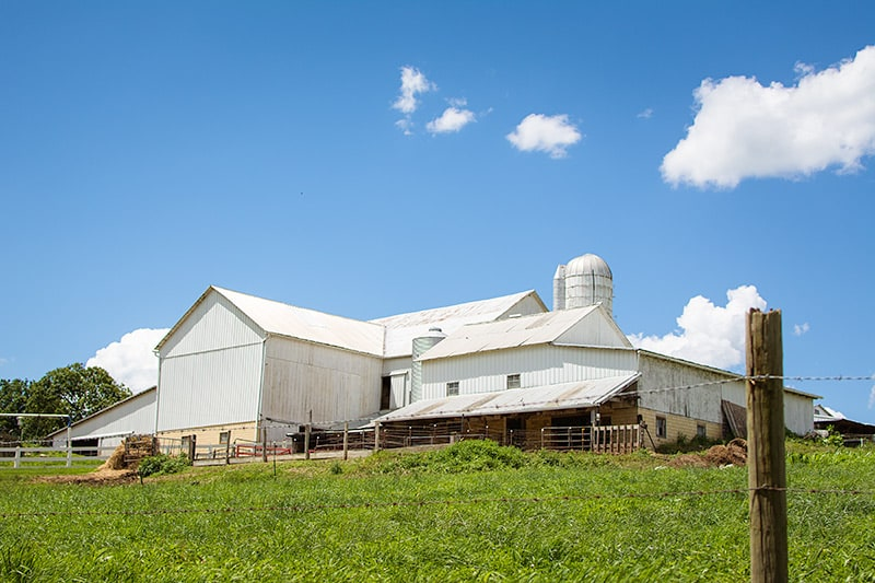 Amish-Farm-and-a-Blue-Sky