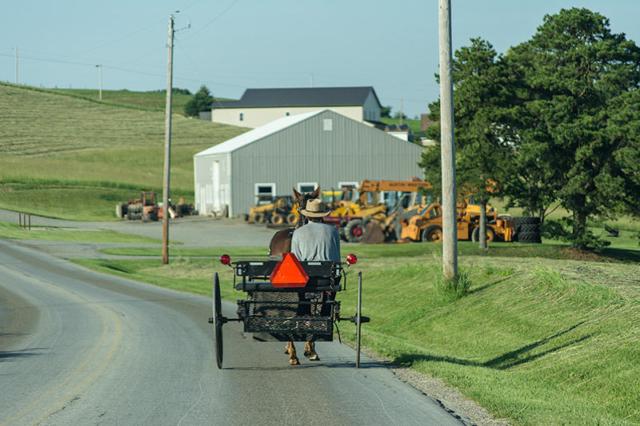 Amish-Horse-and-Cart