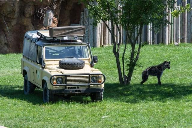Columbus-Zoo-African-Safari-1
