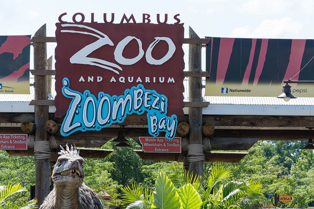 Visiting The Columbus Zoo And Aquarium Family Fun