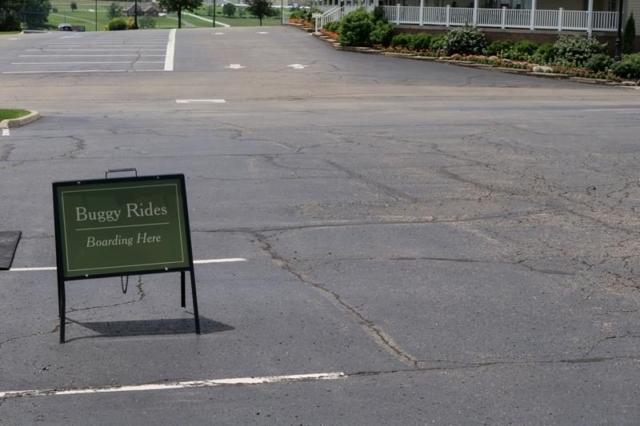 Amish-Buggy-Rides