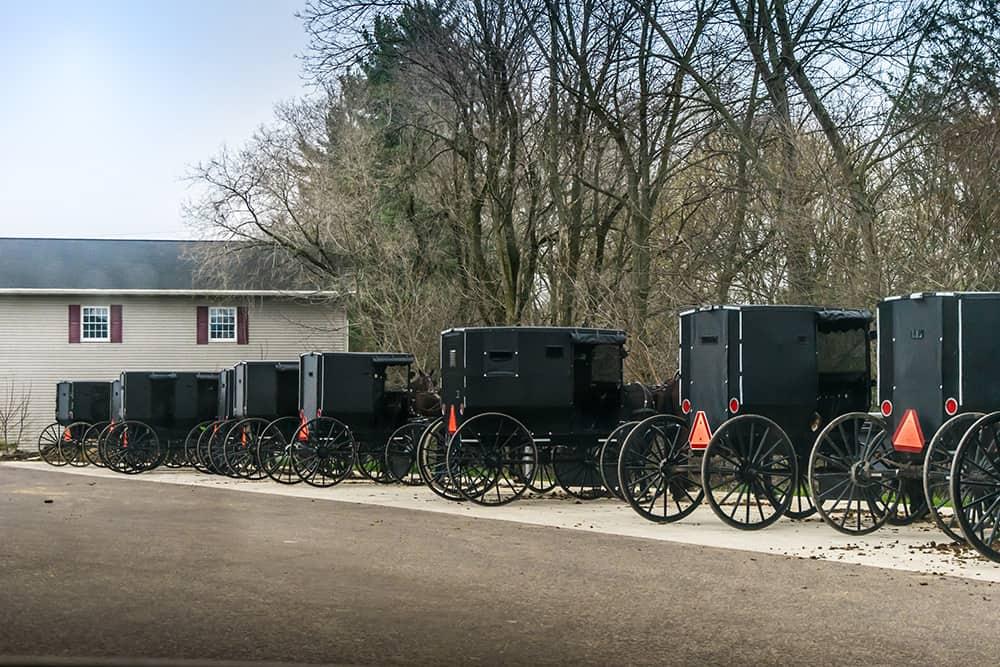 Amish-Buggies-2