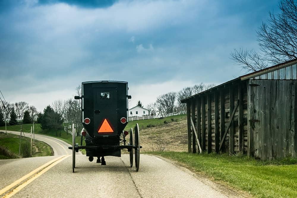 Amish-Buggy-1