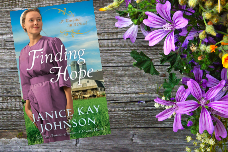 Interview and Giveaway with Janice Kay Johnson